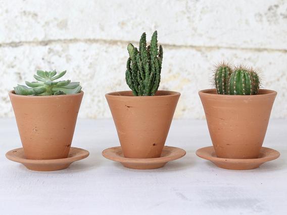 Mini Terracotta Pot Small