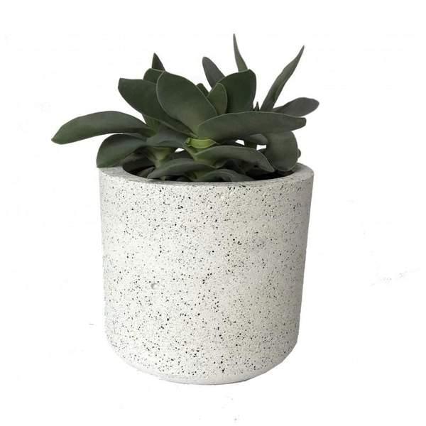 Cylinder Granite White Pot