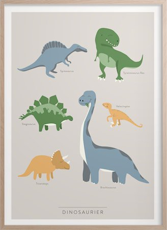 Dinosaurer Poster 50x70 cm
