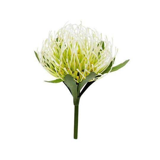Muovikukka, Protea Flower