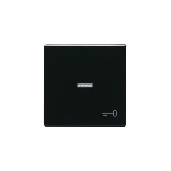 ABB 1789TR-81 Enkeltvippe 1-veis, hvit linse, nøkkel Antrasitt