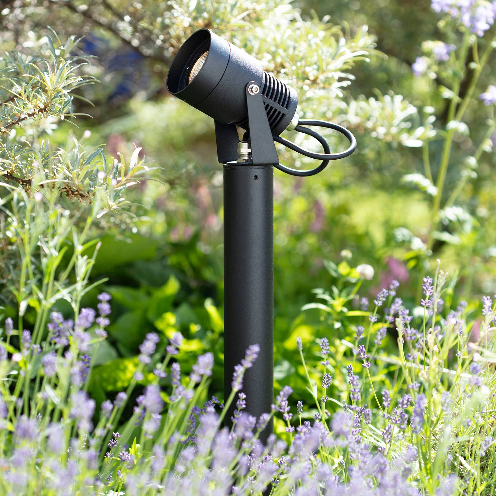 Garden 24 -LED-maapiikkikohdevalo Spotlight, 6 W