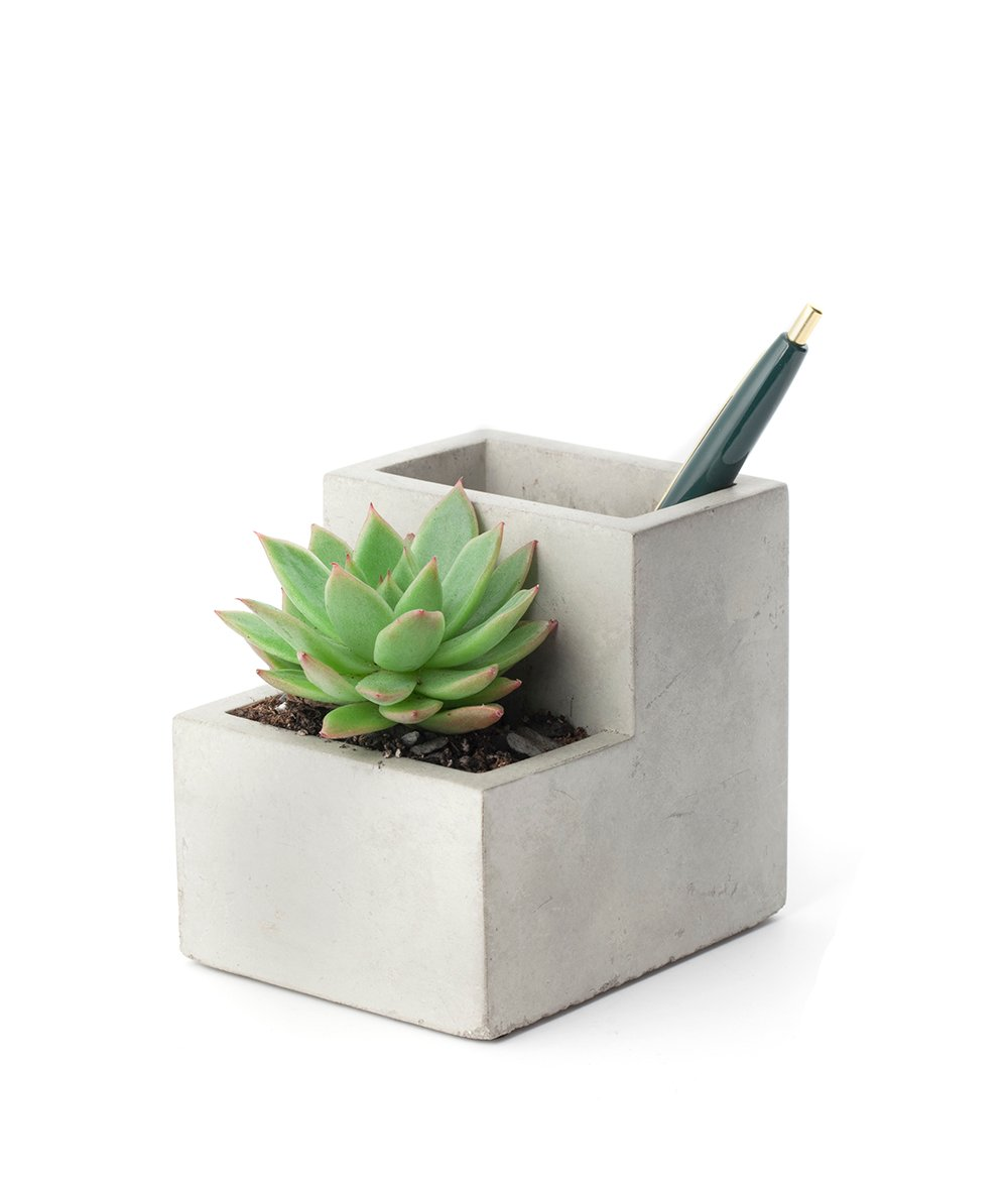 Planter And Pen Holder Small (PL02-S)