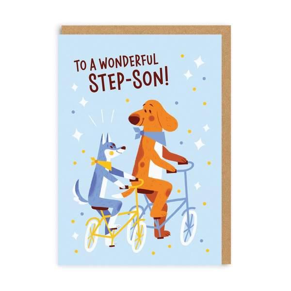 Step-Son Wonderful Birthday Greeting Card
