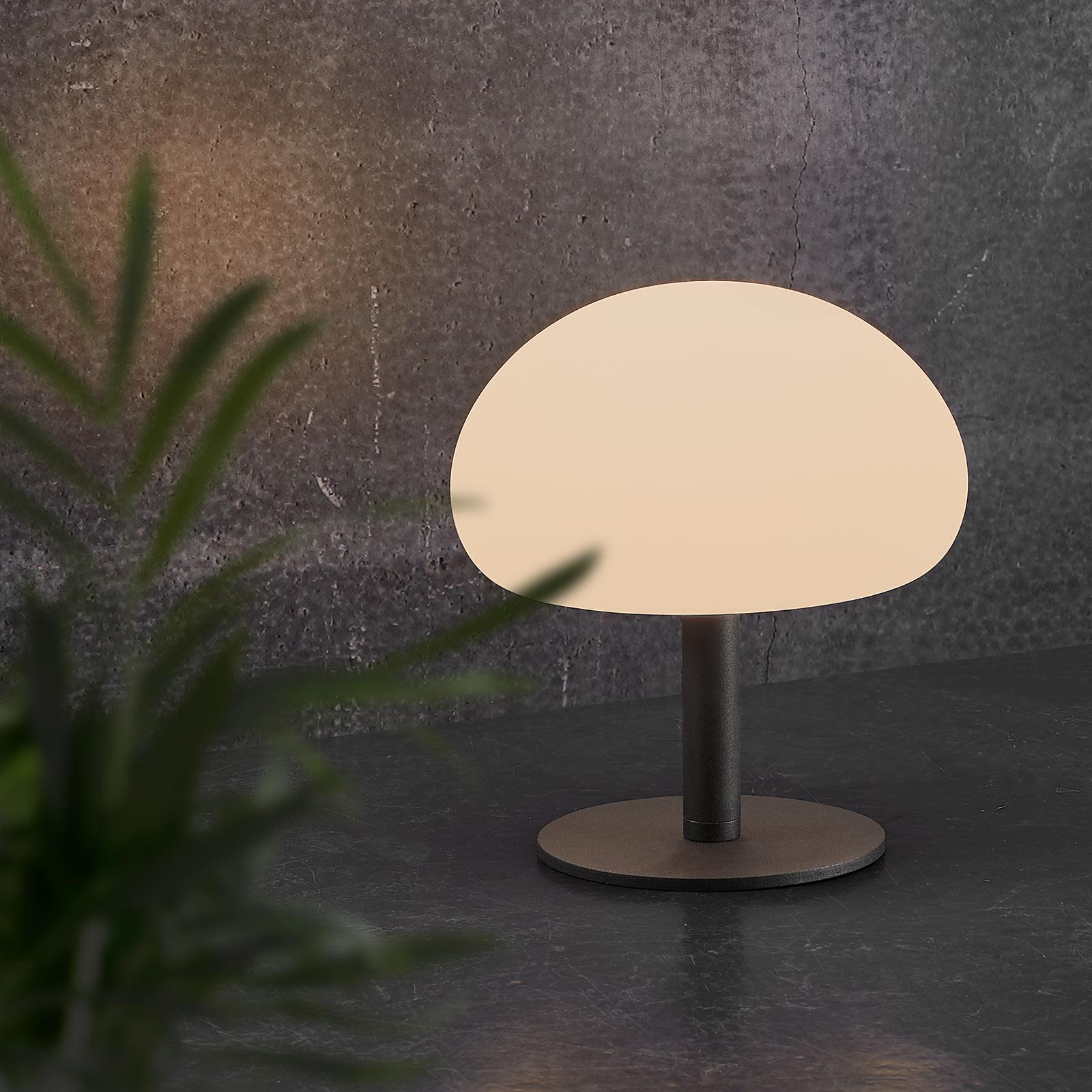 LED-pöytälamppu Sponge table, akku, 21,5 cm