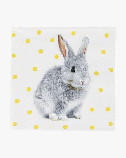 Paperiservetit, Kanin