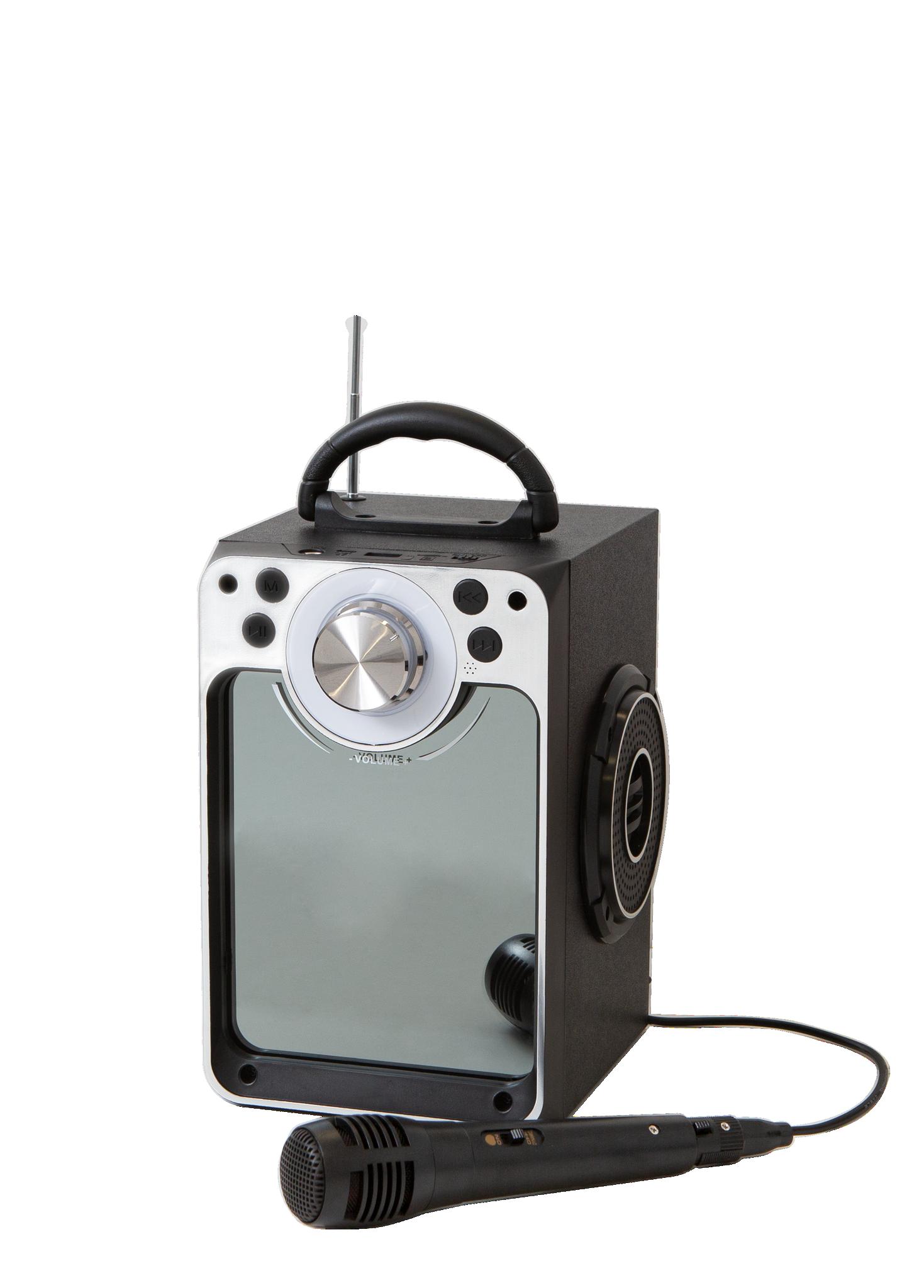 Karaoke Machine W/Bluetooth (30135)
