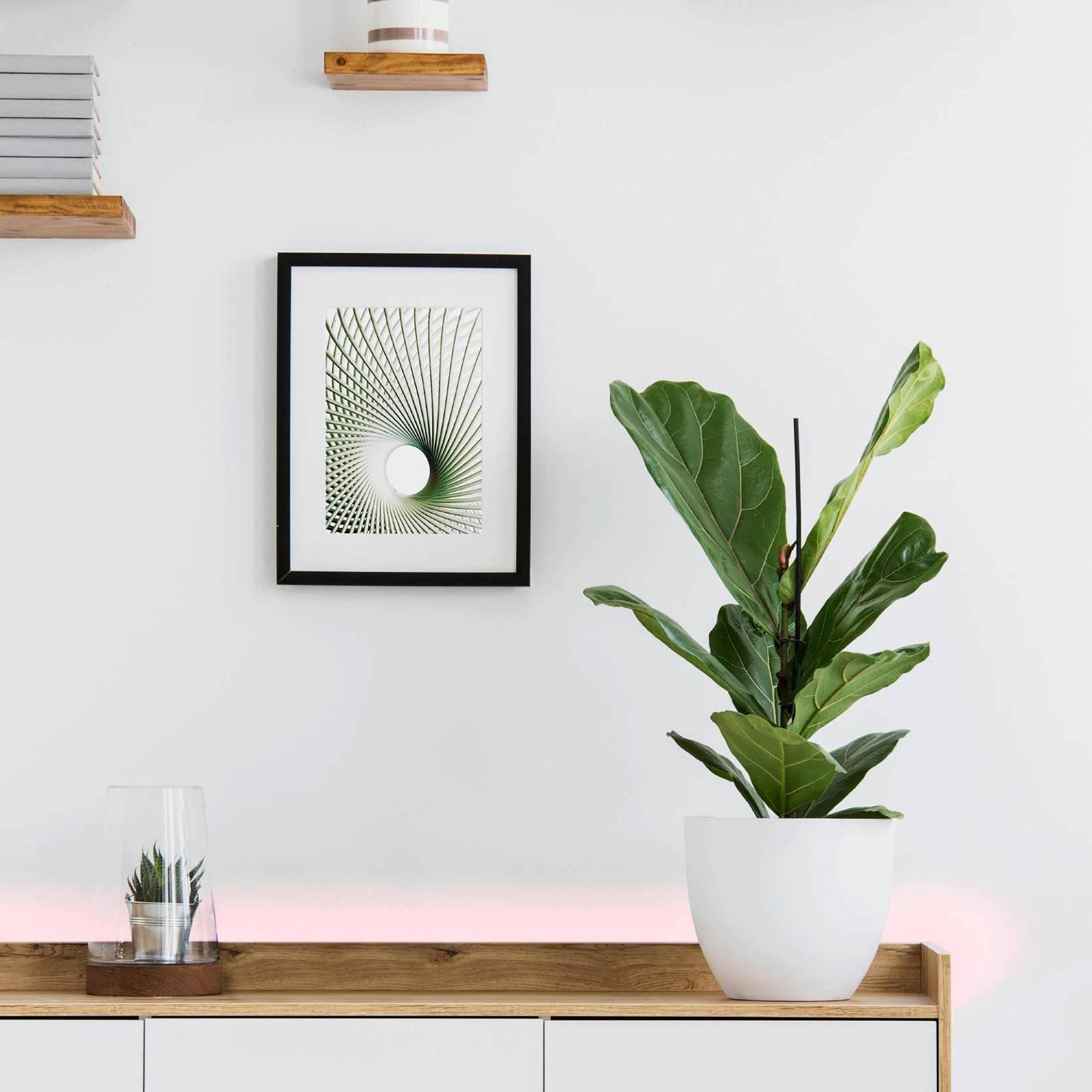 EGLO connect Stripe-C -LED-nauha RGBW 300 cm