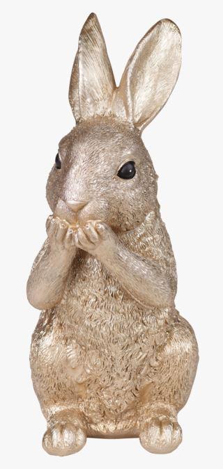 Rabbit no speak koriste kulta