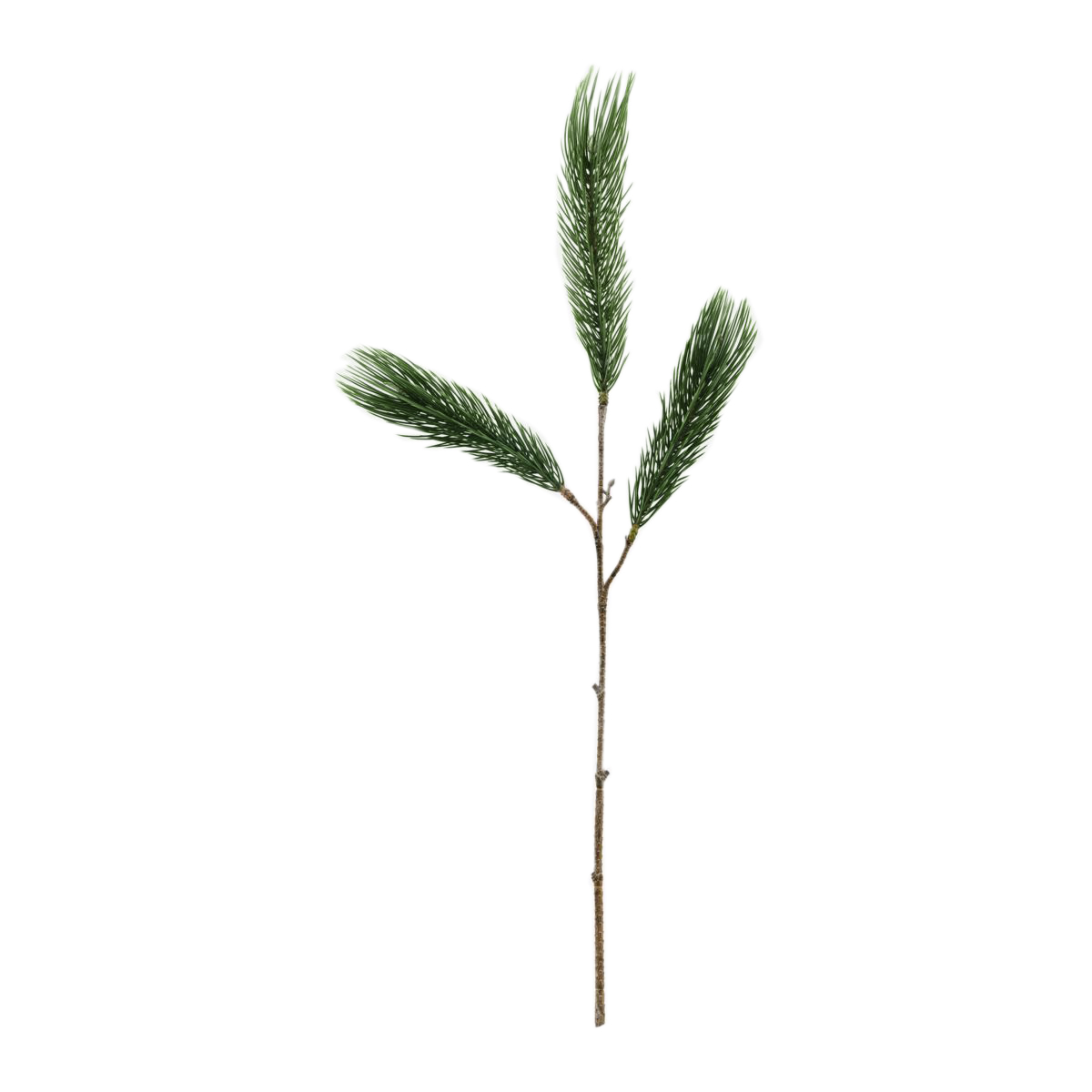 House Doctor - Branch Pine Tree - Green (261390008/261390008)