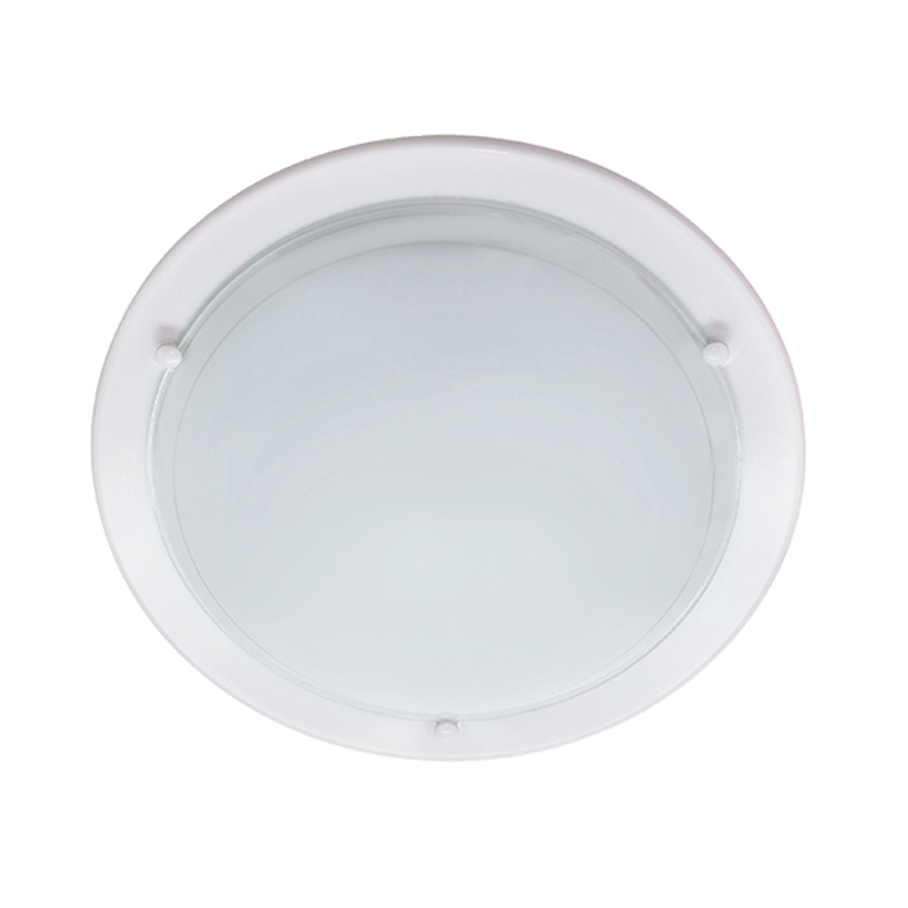Kattovalaisin P1B, valkoinen