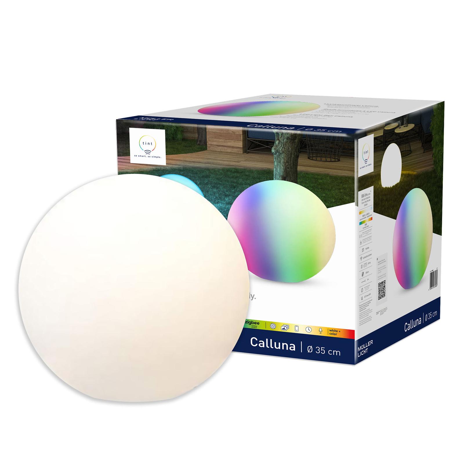 Müller Licht tint Calluna -LED-valaisinpallo IP44