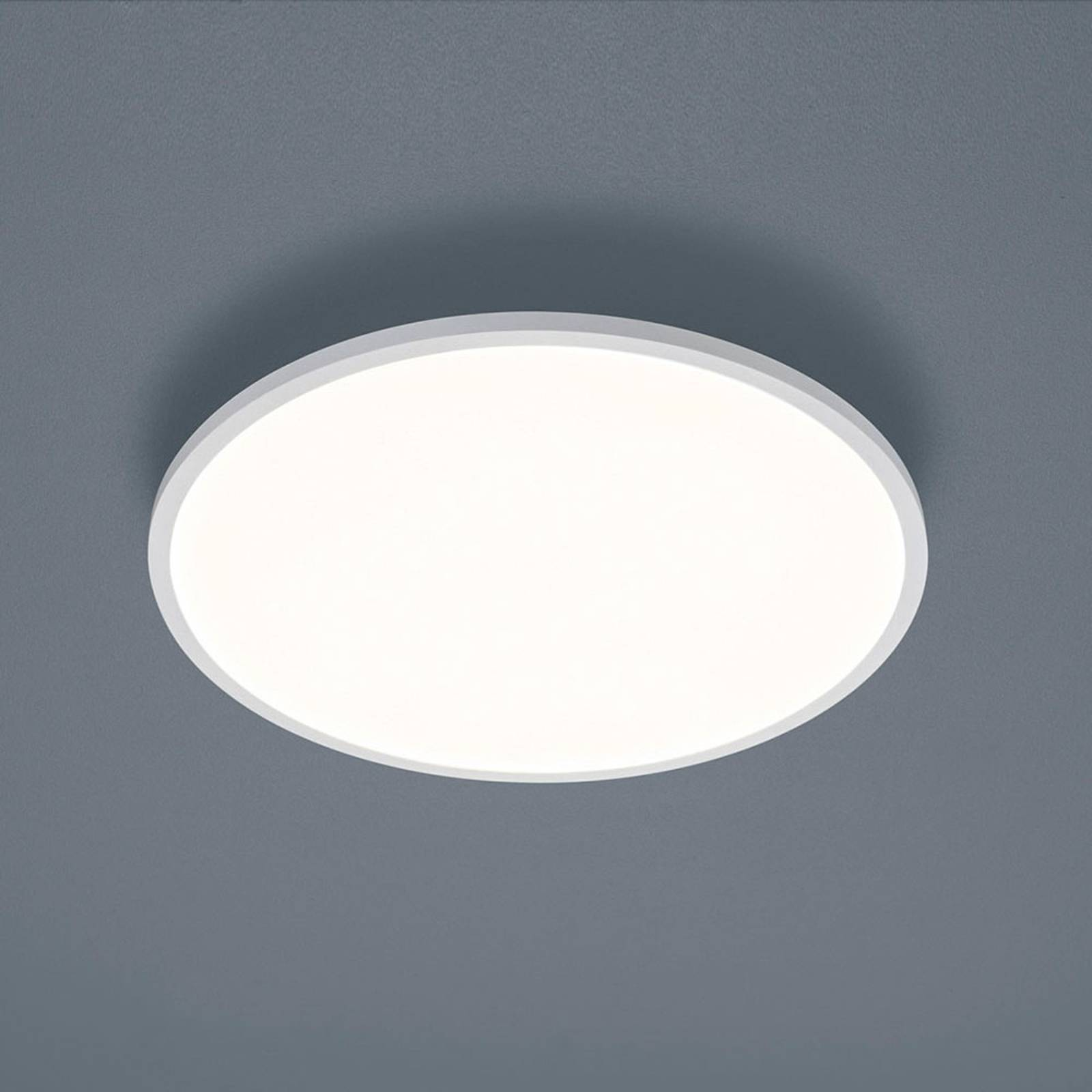 Helestra Rack -LED-kattovalaisin pyöreä valkoinen