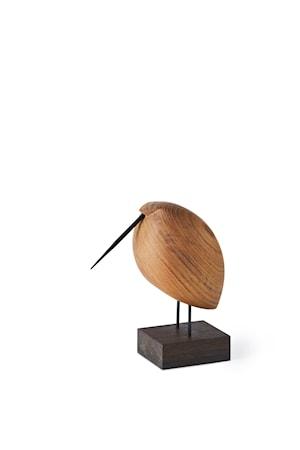Beak Bird Lazy Snipe