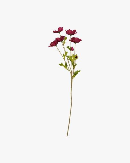 Tekokukka, Rose