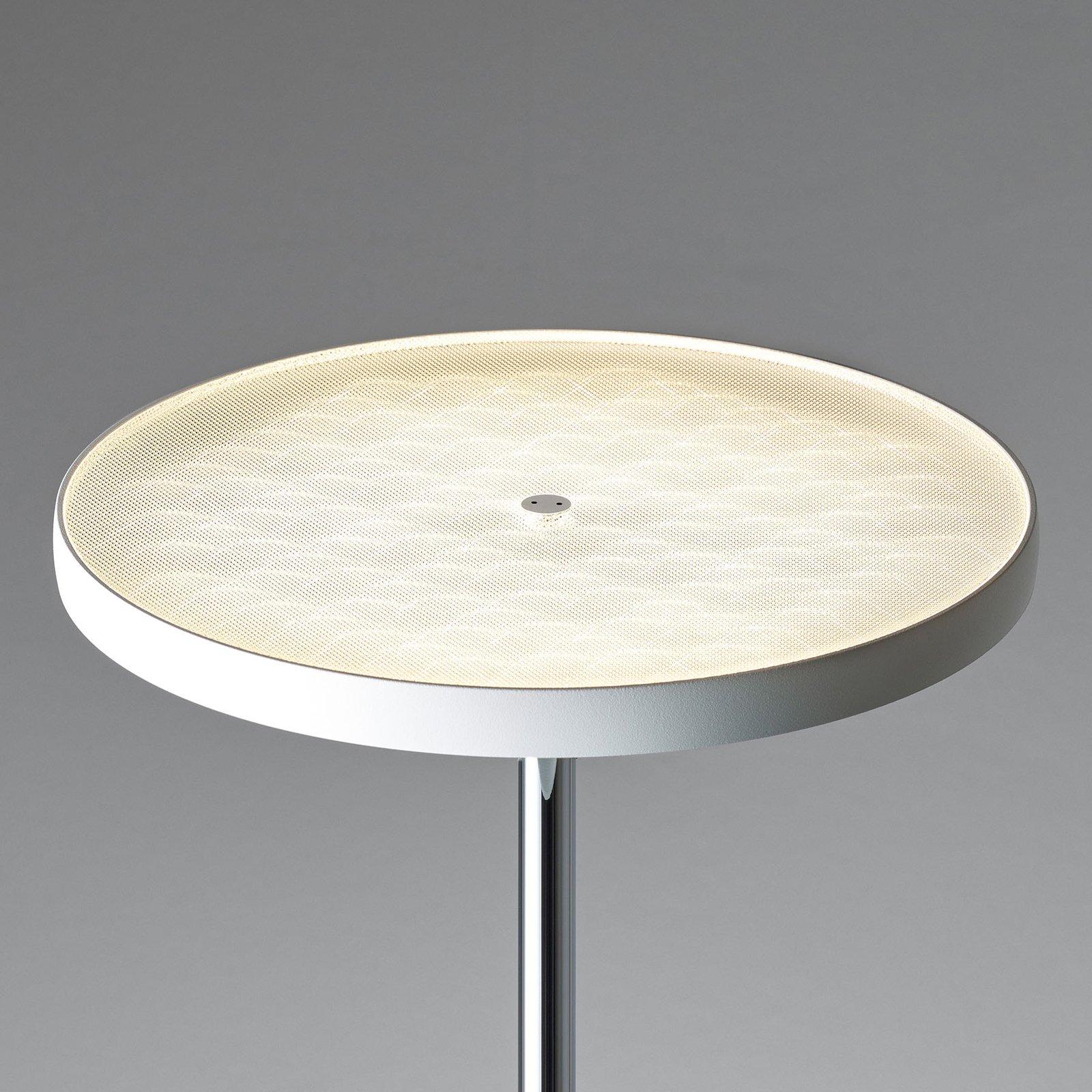 OLIGO Decent Max LED-gulvlampe, hvit matt