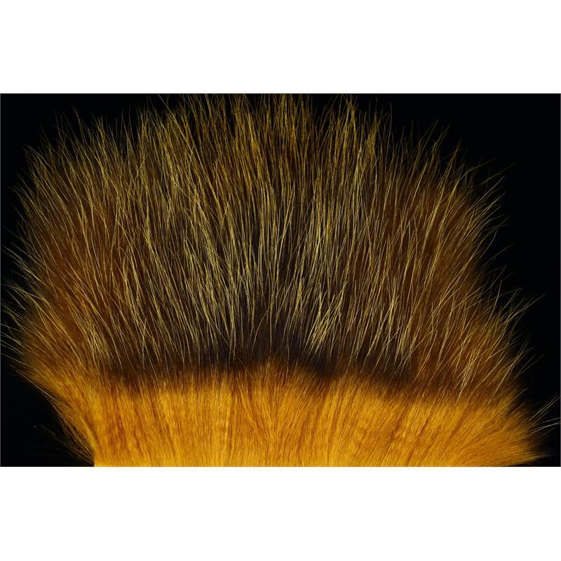 American Opossum Honey Gold FutureFly