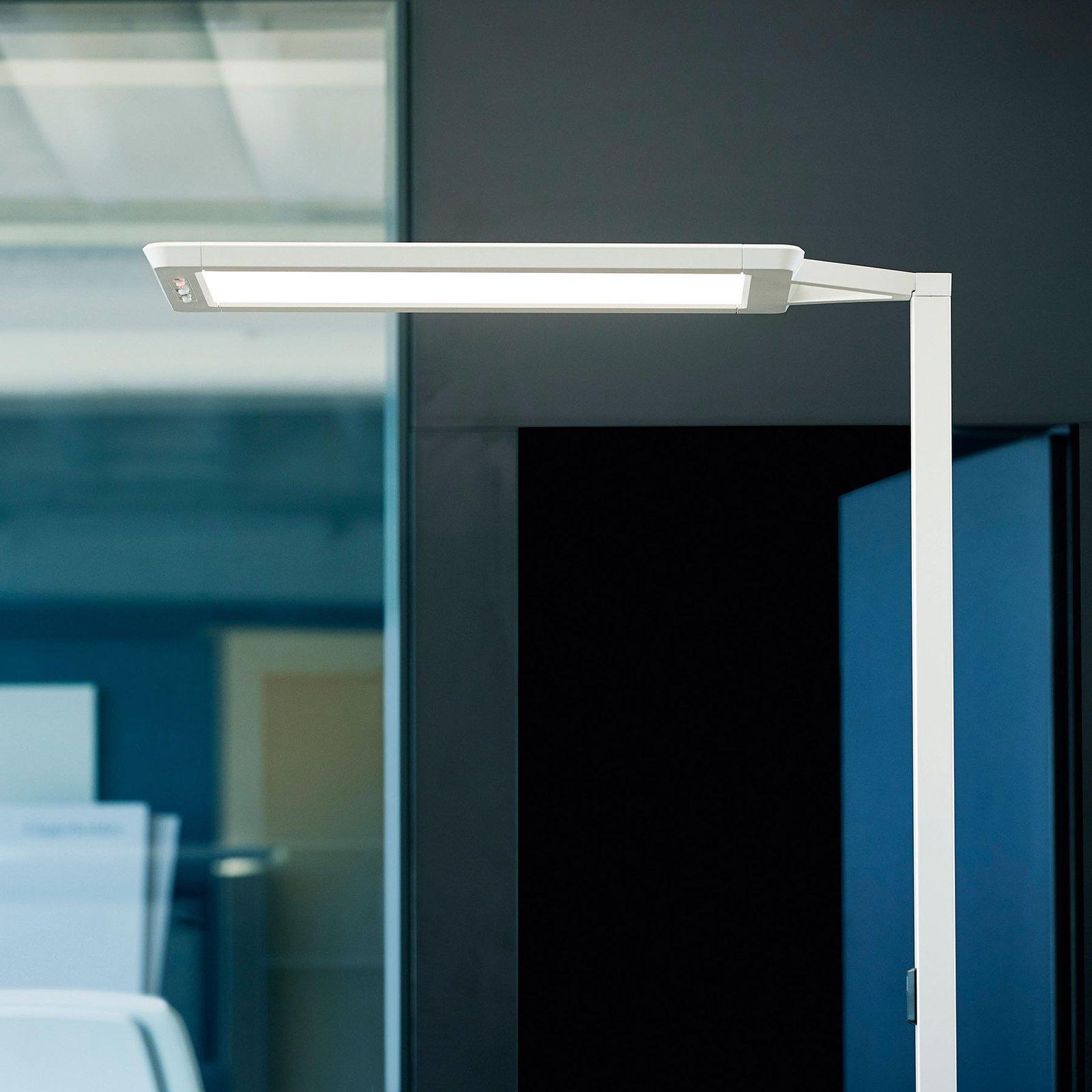 LED-gulvlampe Yara.single 4 000 K, BT, PIR, sølv