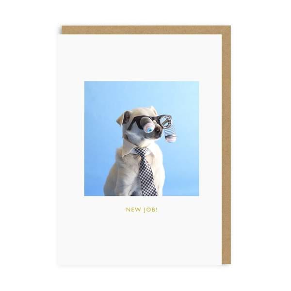 New Job Dog Greeting Card