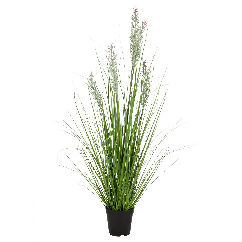 Gressplante Strå 170 cm