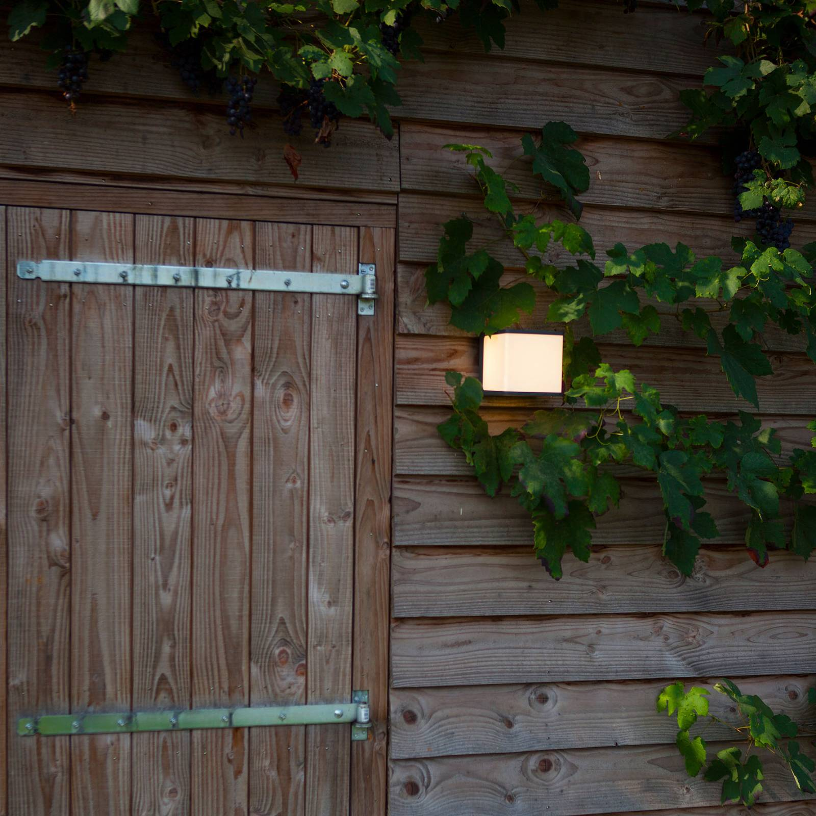 LED-ulkoseinälamppu Doblo, korkeus 15 cm