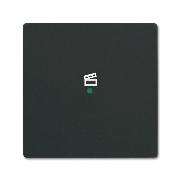 ABB Future Linear 6220-0-0621 Yksiosainen vipupainike tilanneohjaus Musta