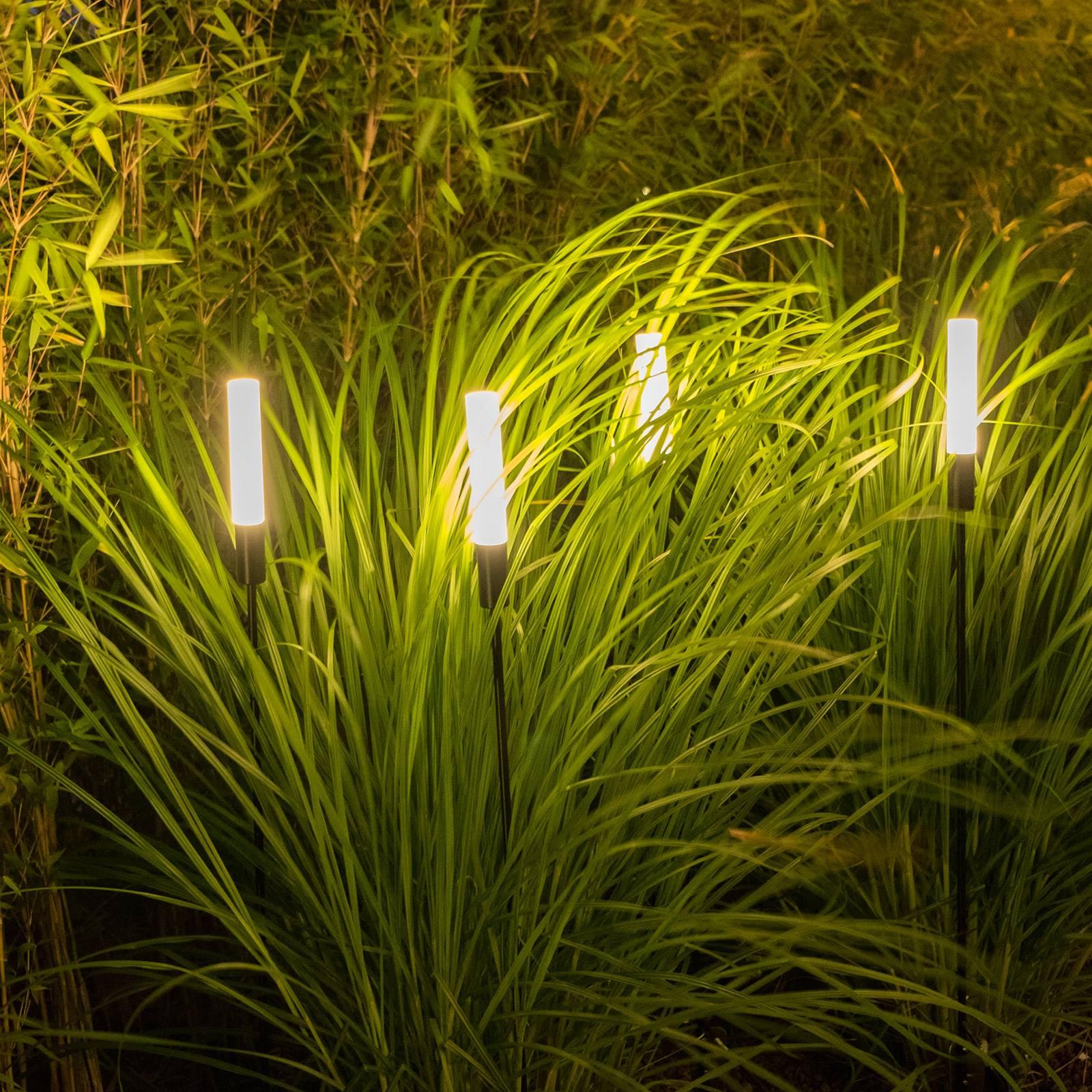 Egger Pisa -LED-pylväsvalaisin maapiikillä