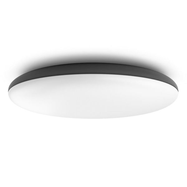 Philips Hue Cher Plafond 33,5 W LED, 3000 lm