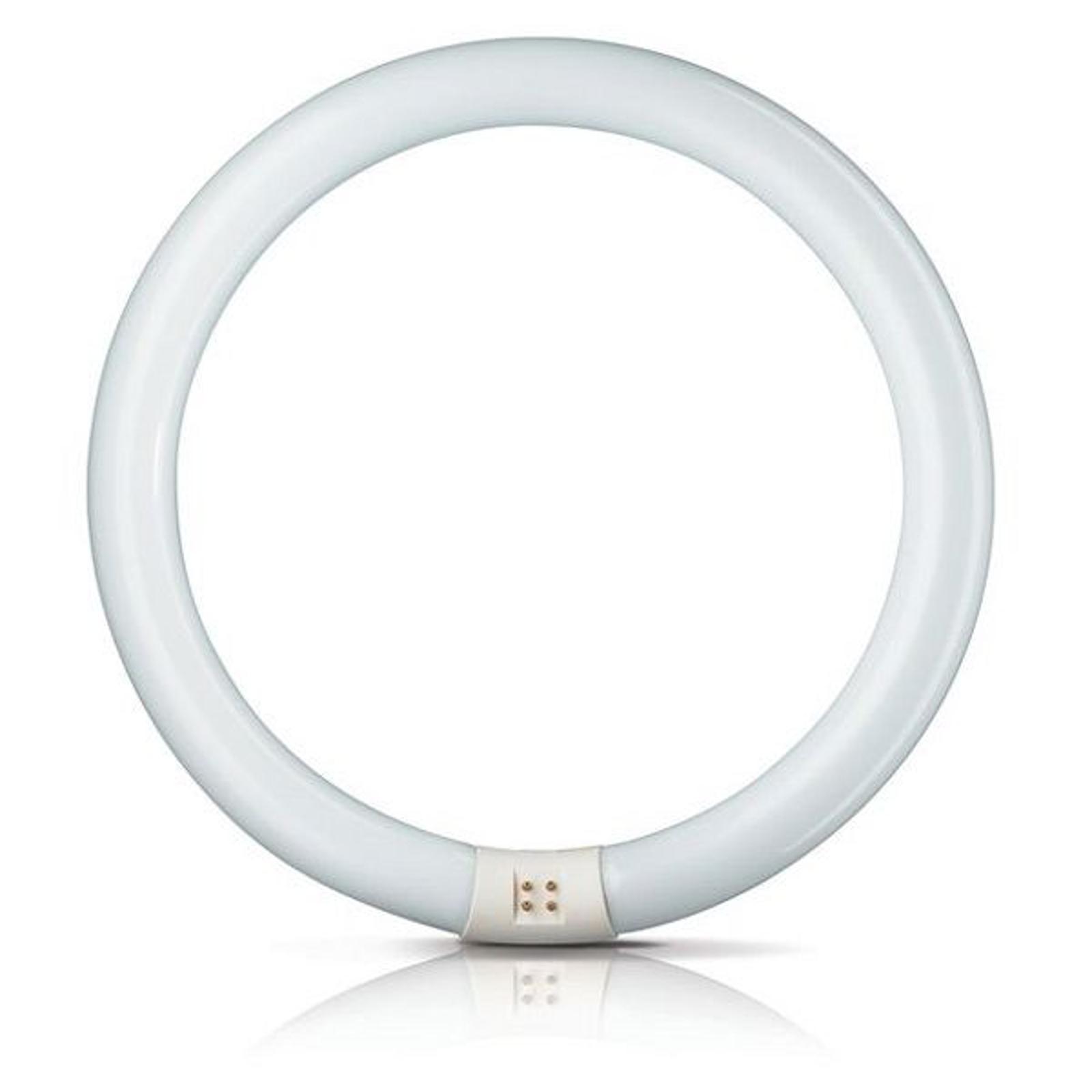 G10q 40W 840 Pyöreä loistel. Master Circular TL-E