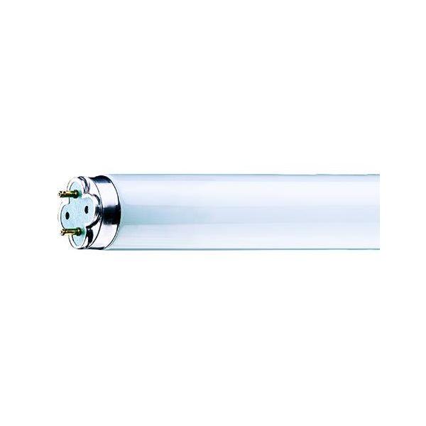 Philips MASTER TL-D Xtreme Loisteputki G13, lämmin valkoinen