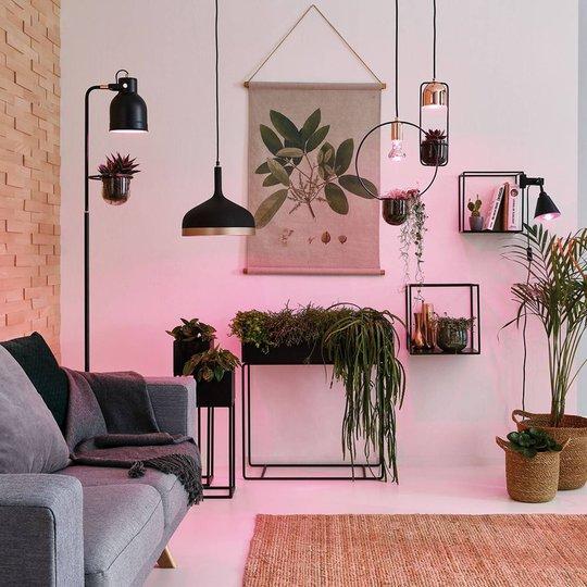 Paulmann -LED-kasvilamppu E27 Grow Green 6,5W