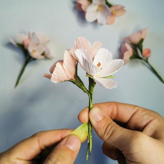 At Home: Hello Petals