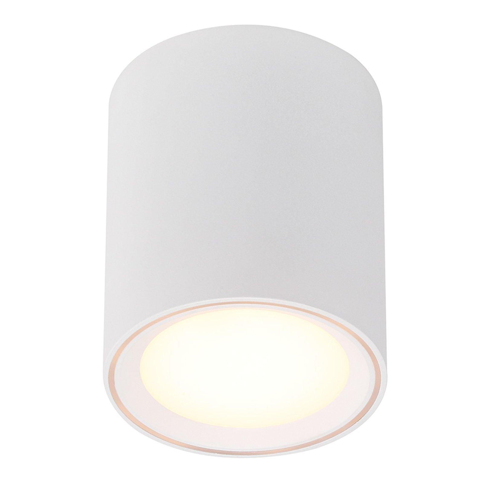 Fallon LED-taklampe, høyde 12 cm