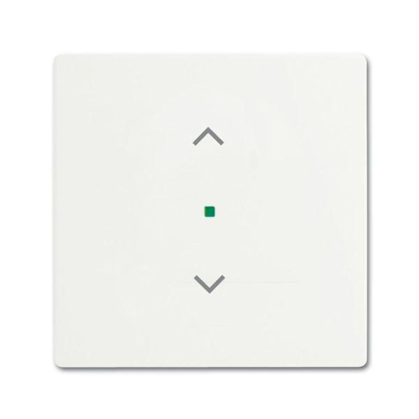 ABB Future Linear 6220-0-0603 Yksiosainen vipupainike verhoille valkoinen