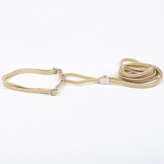 Show Dog Utställningskoppel med Halsband Halvstryp Beige (5 mm x 120 cm)