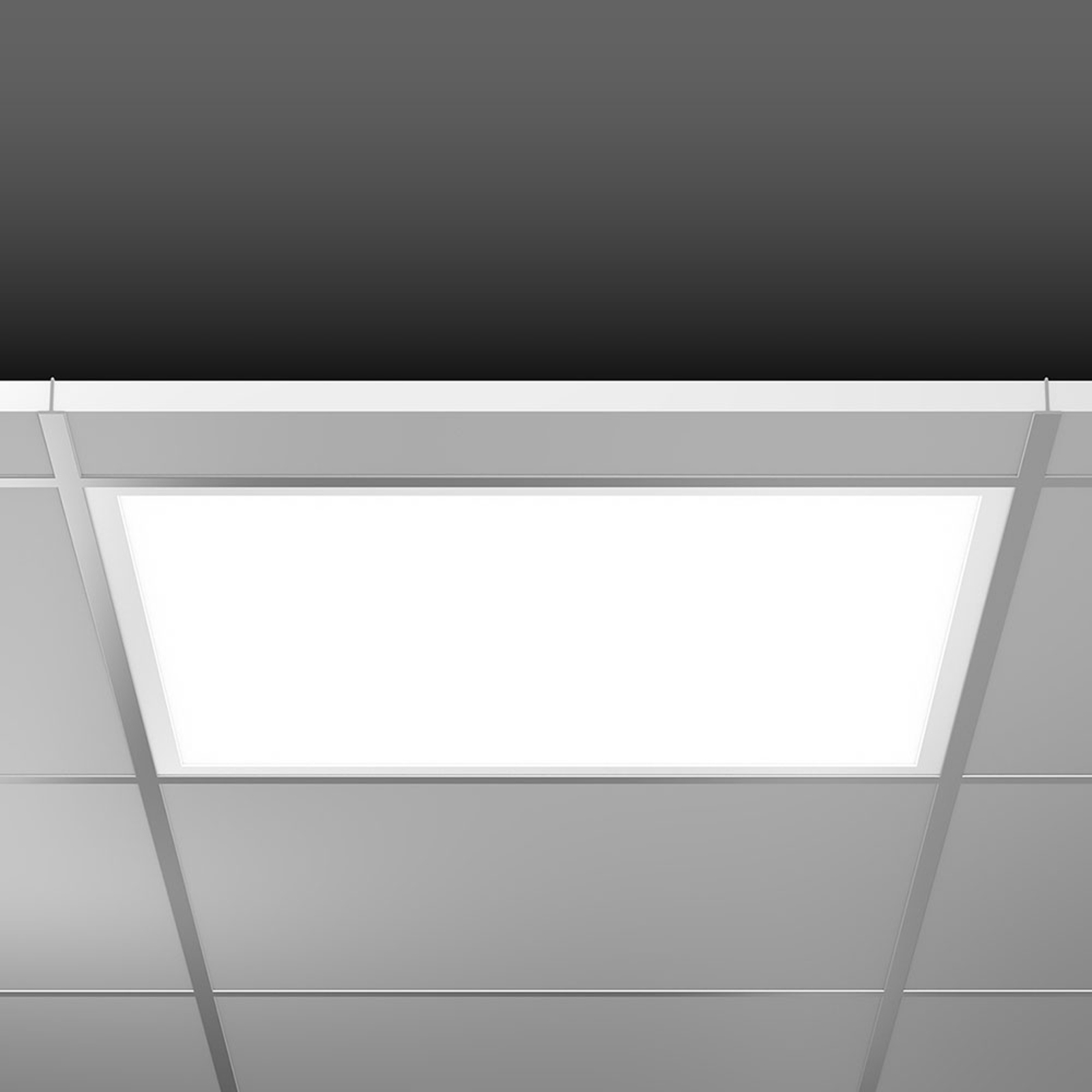 RZB Sidelite Eco LED-paneeli DALI 59,5cm 29W 840