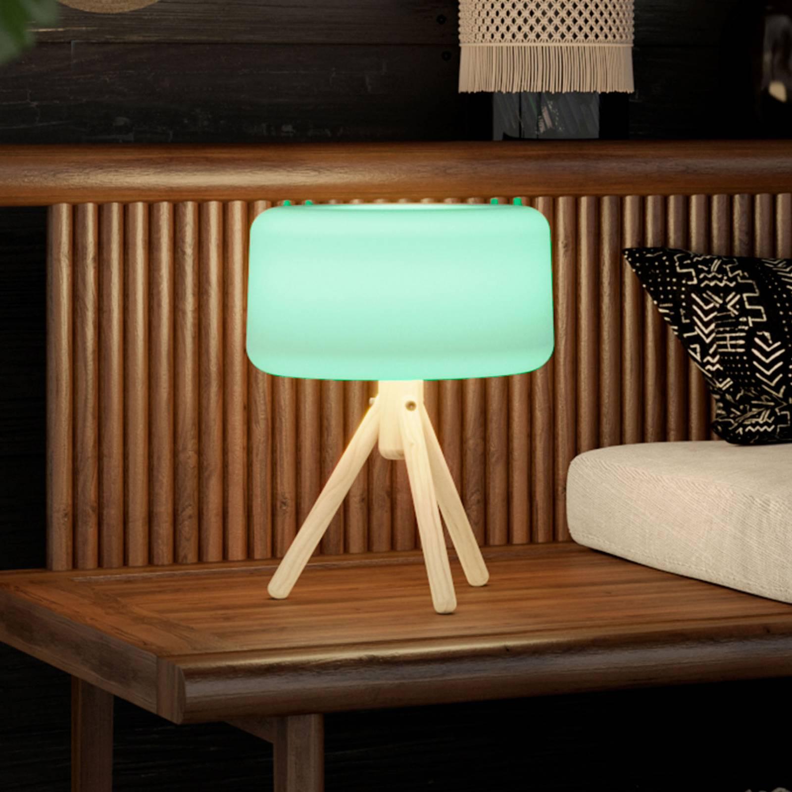Newgarden Chloe -LED-aurinko-pöytälamppu, akku