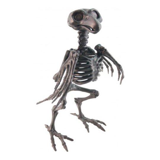 Skelett Kråka