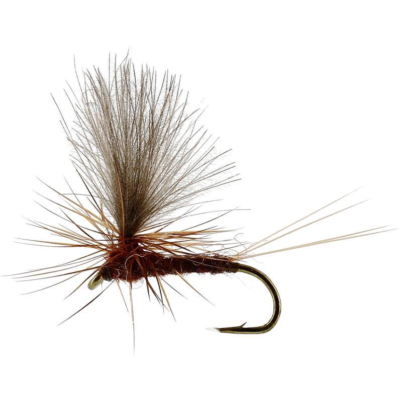 Vespertina Dun Brown #18 TMC100