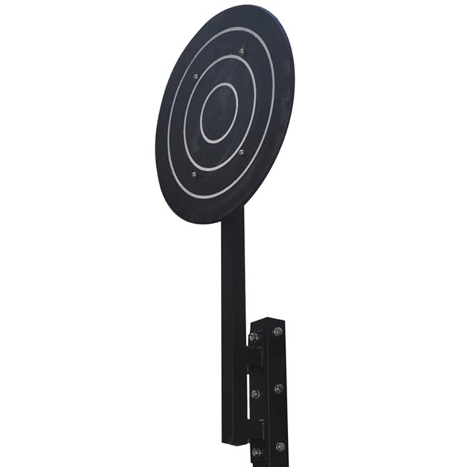 Master Fitness Wall Ball Target, Crossfit rig