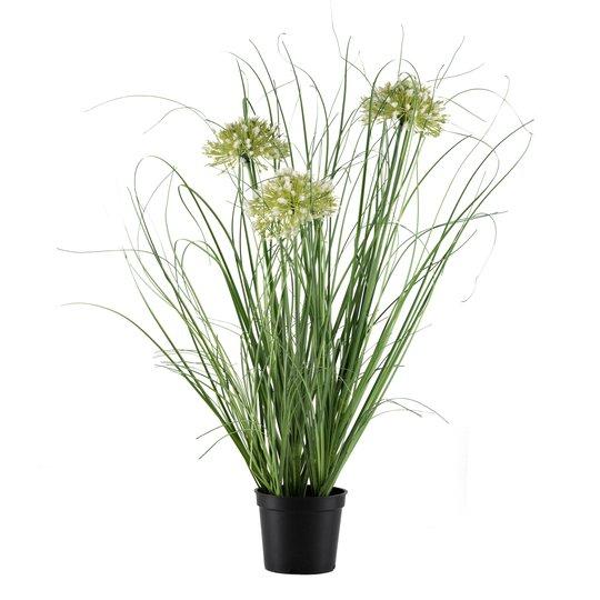 Blomst i potte 50 cm