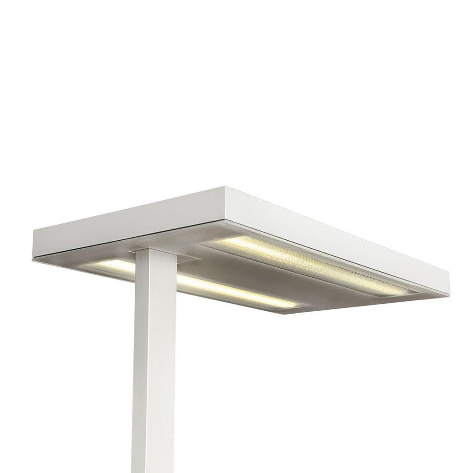 Free-F LED-gulvlampe 4 000 K dimbar sensor hvit