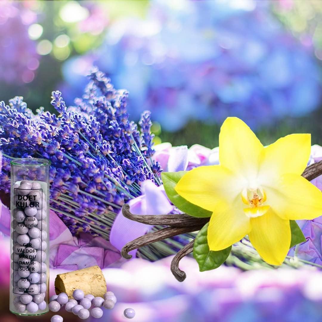 Vanilj & Lavendel Doftkulor