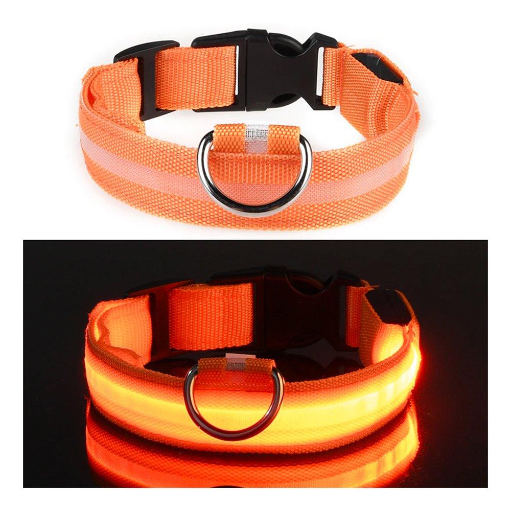 LED Hundhalsband - Orange - Small