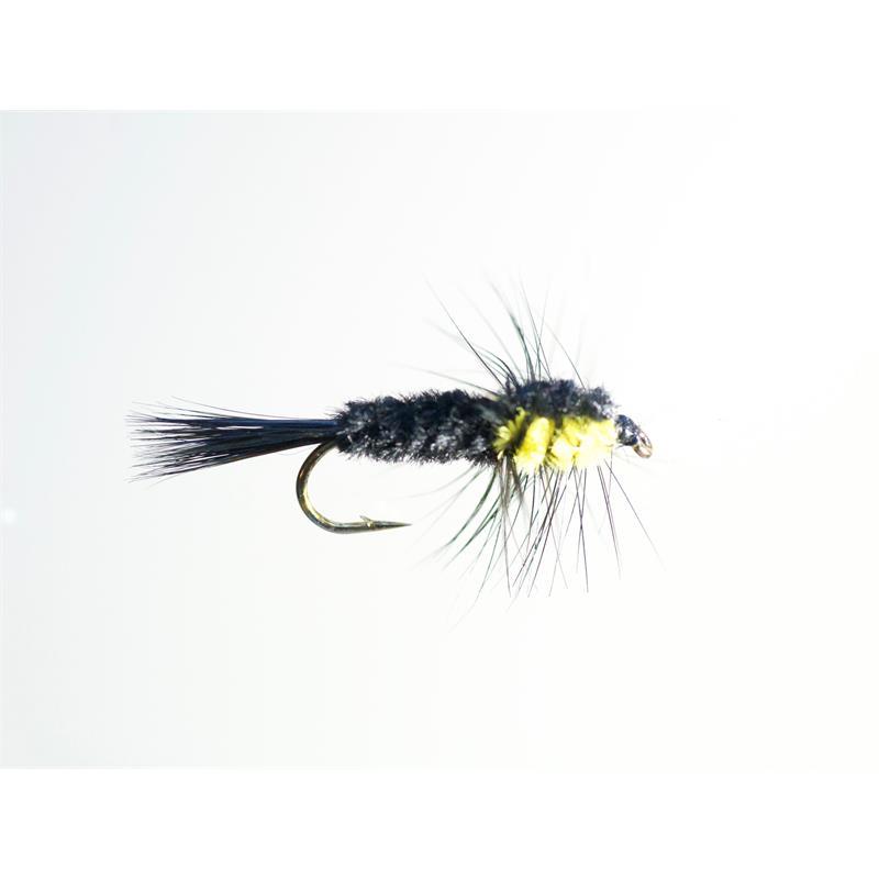 Montana Yellow #12 Dobbelkrok