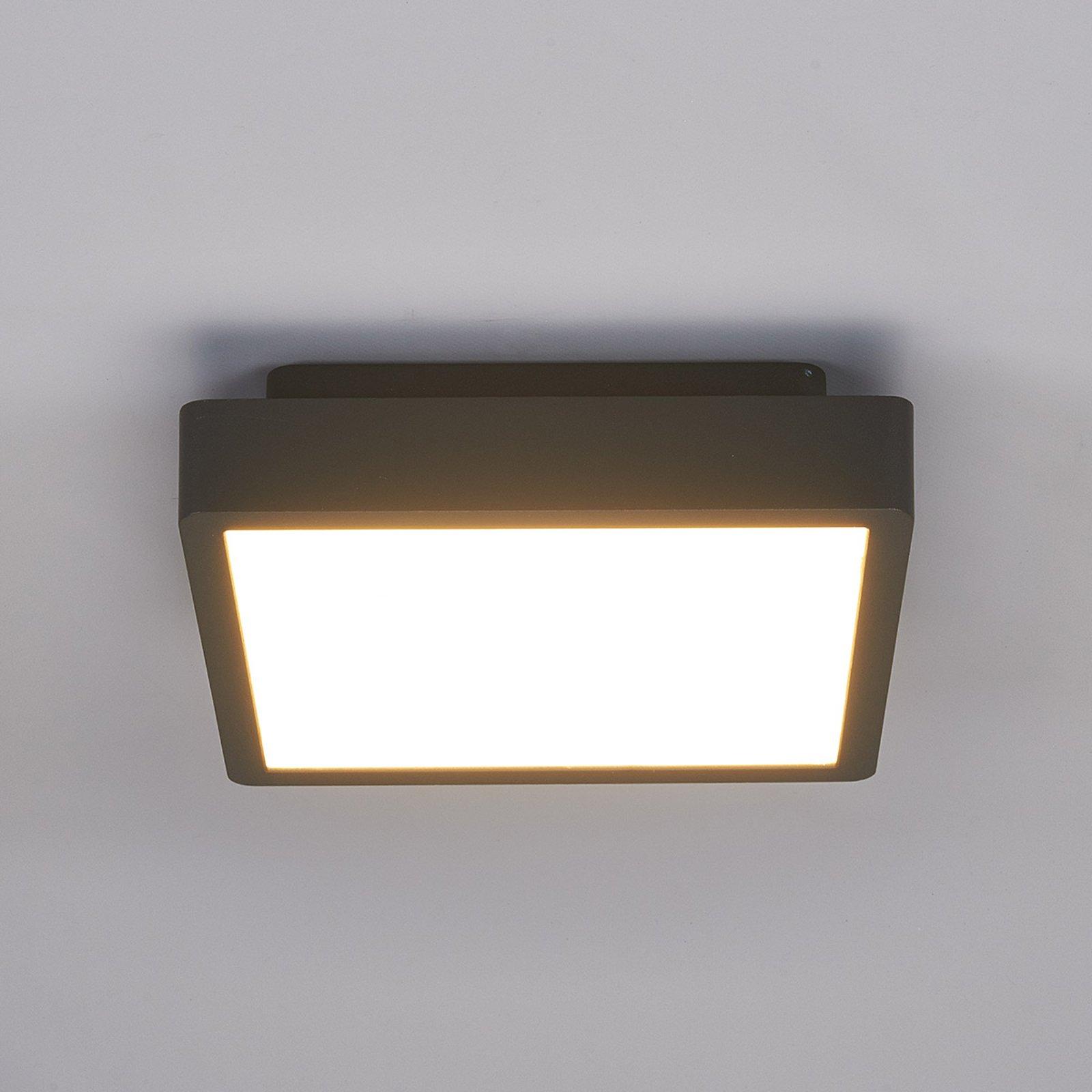 Utendørs Talea LED-taklampe, kantet