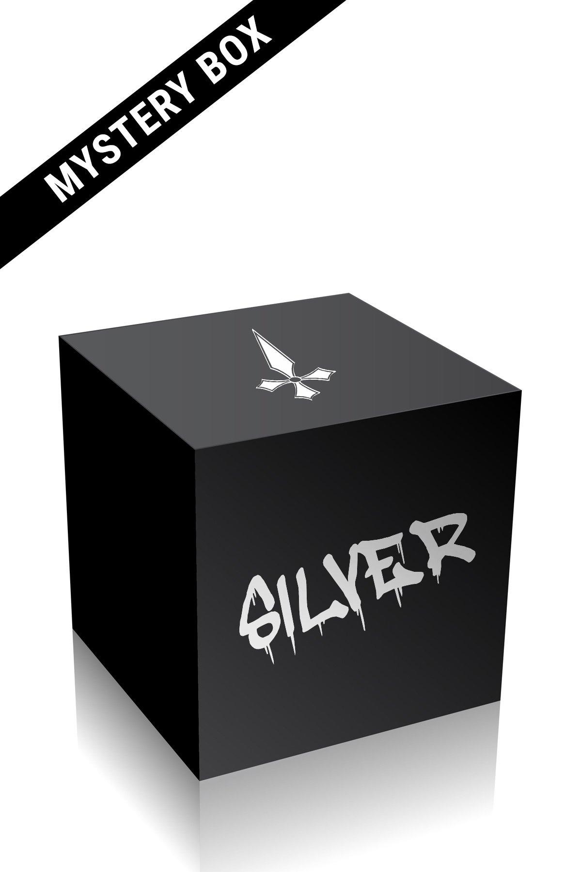 Silver Mystery Box, Small