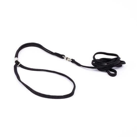 Show Dog Show Lead Round (5 mm)