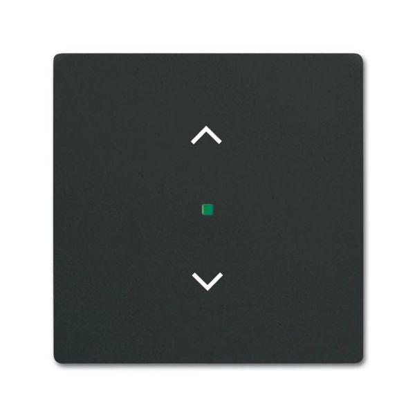 ABB Future Linear 6220-0-0620 Yksiosainen vipupainike verhoille Musta