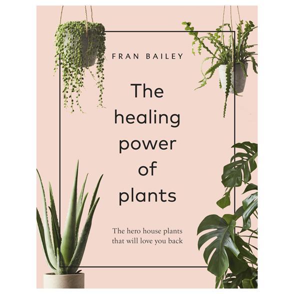 Healing Power of Plants